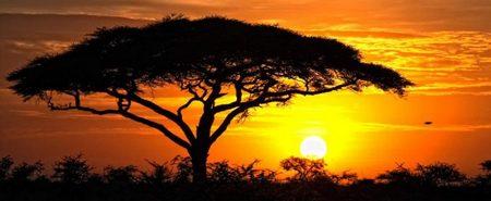 Africa Paisajes Inslitos del Continente Africano